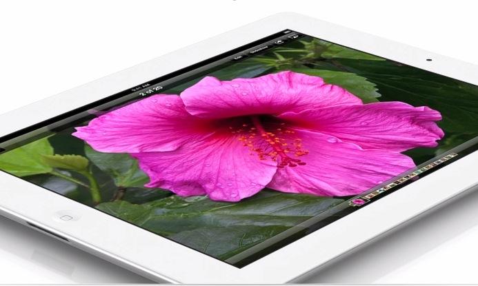 New iPad Case & Accessories